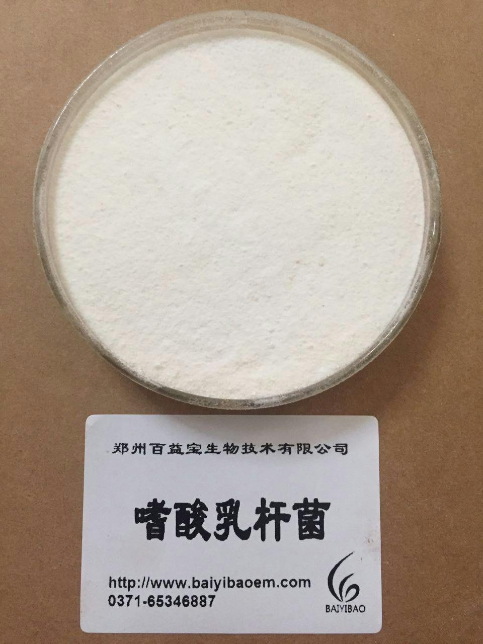 嗜酸乳杆菌